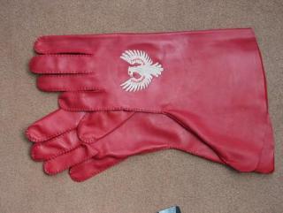 Rukavice NAPA 1438 červená s výšivkou empty 5faf0de51c